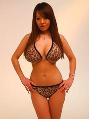 Hitomi Tanaka posing her huge breasts in leopard bikini
