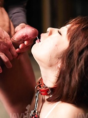 Rio Kagawa Asian in leash gets many dicks and sperm in mouth - Japarn porn pics at JapHole.com