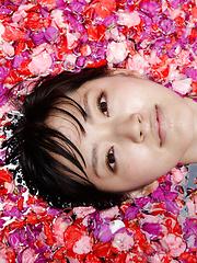 Airi Suzuki Asian in bath suit enjoys petals all over her body - Japarn porn pics at JapHole.com